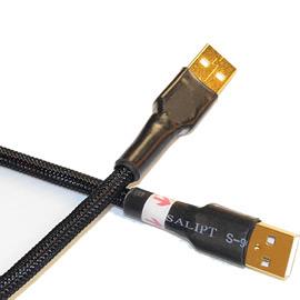 志達電子 CAB039 (Canare 20AWG) USB A公-A公 Canare USB DAC 專用傳輸線 傳導線 適用 谷津 U1 U2