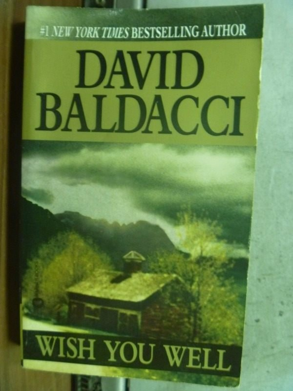 【書寶二手書T3/原文小說_HLS】Wish you well_David Baldacci