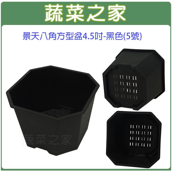 【蔬菜之家005-D132-BL】景天八角方型盆4.5吋-黑色(5號)
