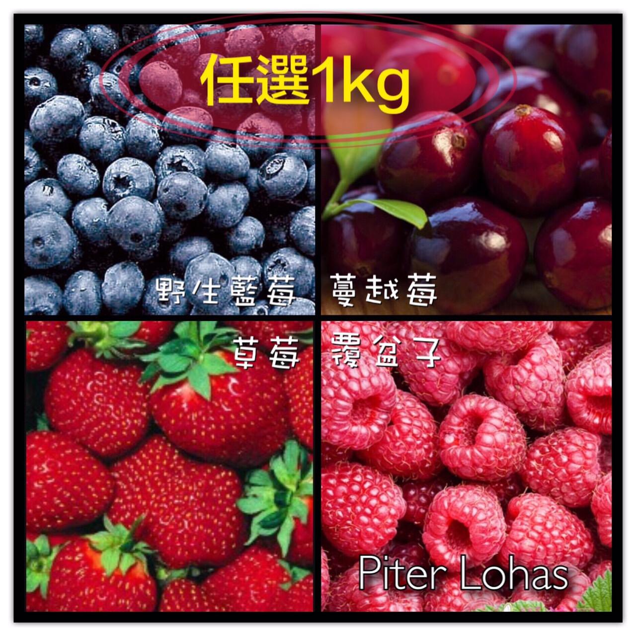 免運費!任選1公斤I.Q.F.急速冷凍莓果系列,[特選頂級蔓越莓/覆盆子/草莓/野生藍莓/森林綜合莓果(前四種混和)]