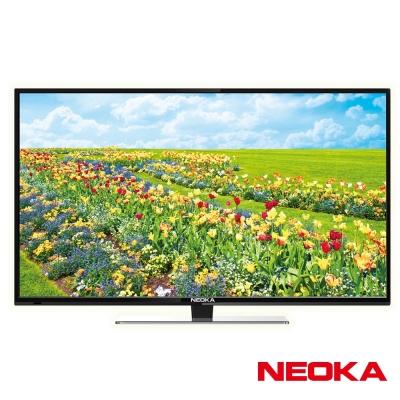 NEOKA新禾 24吋液晶顯示器+視訊盒24NS65