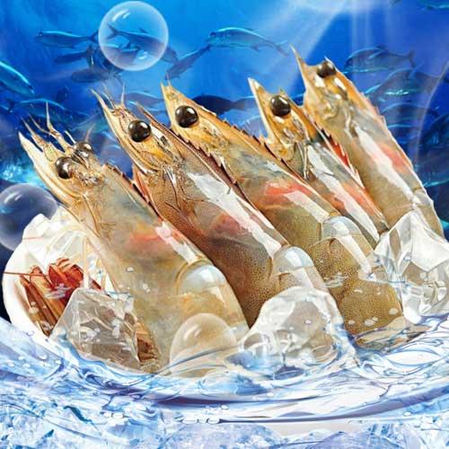 中南美生凍鮮甜大白蝦~只要111元★優食網海鮮肉品專家