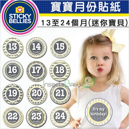+蟲寶寶+【美國Sticky Bellies】寶寶創意好禮成長紀錄-寶寶月份貼紙13-24個月-(迷你寶貝)《現+預》