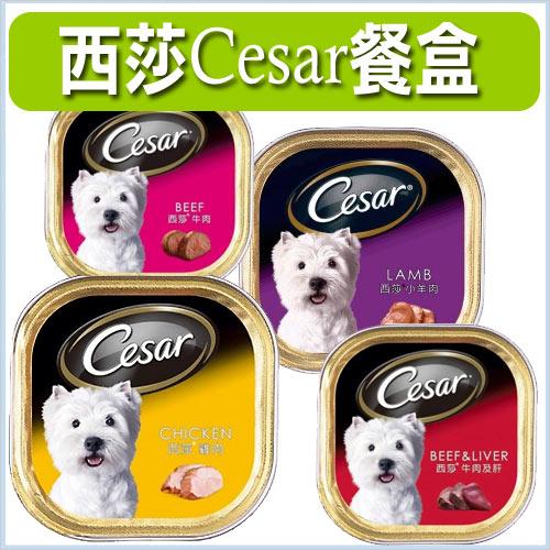 《 Cesar西莎 》 精緻系列 四種口味/寵愛您的狗狗