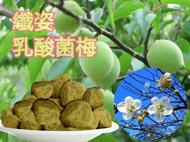 【清新自在】活性乳酸菌纖姿梅/抹茶纖姿梅/綠茶梅/120g-特價99元免運費
