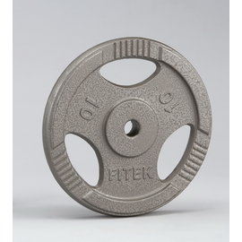 【Fitek 健身網】10公斤手抓孔槓片☆10KG槓片☆10KG槓片☆10公斤鑄鐵槓片☆舉重/重量訓練