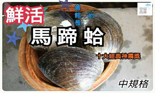 ♗曾館長➔神農獎 〈馬蹄蛤〉1斤5~6顆X3斤/组(中規格)→【SDF雲閣百貨】