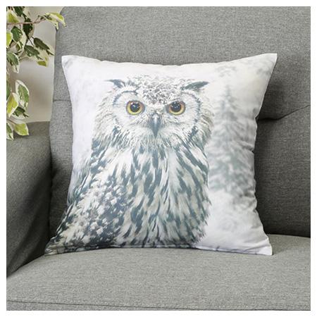 45x45抱枕套 貓頭鷹 OWL 16