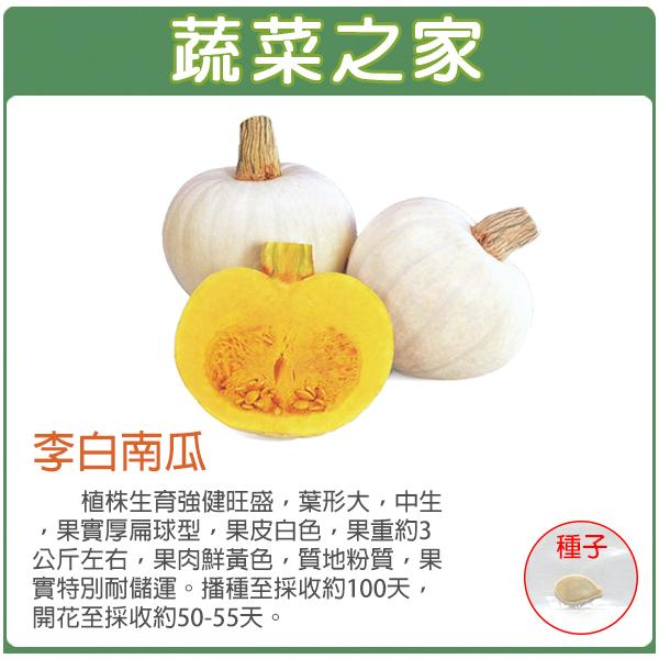【蔬菜之家】G84.李白南瓜種子1顆(李白)