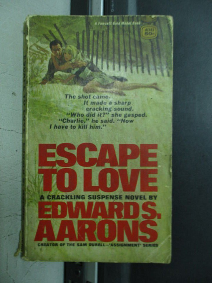 【書寶二手書T2/原文小說_OQA】Escape to love_Edward S.Aarons