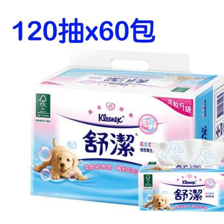 舒潔拉拉炫彩抽取式衛生紙 (120抽/60包/箱) *999元含運