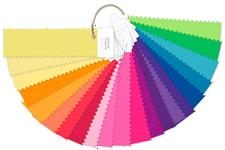 【永昌文具】Pantone FFN100 螢光【紡織】尼龍鮮豔色組合色卡 / 組