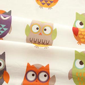 貓頭鷹變裝大賽• Owl Owl