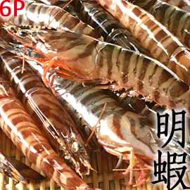 ㊣盅龐水產 ◇大明蝦6隻裝◇300g/盒 零售$365 每隻約50g 超低價 批發 零售 餐廳