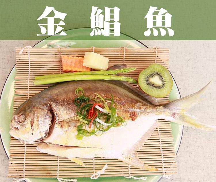 《鮮樂GO》金鯧魚 500g土10%/隻 / 肉質鮮嫩可口,媲美價值昂貴白鯧 / 喜氣金黃色澤,辦桌拜拜必備食材