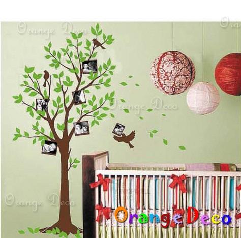 【橘果設計】相片樹 DIY組合壁貼 牆貼 壁紙 無痕壁貼 室內設計 裝潢 裝飾佈置