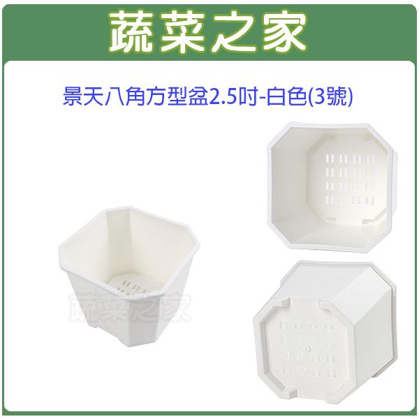 【蔬菜之家005-D116-WI】景天八角方型盆2.5吋-白色(3號)