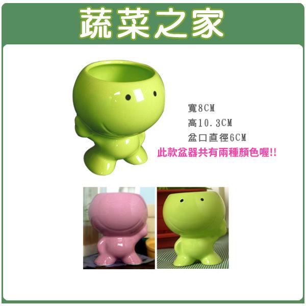 【蔬菜之家004-G04】可愛陶瓷活力娃娃-二色可選