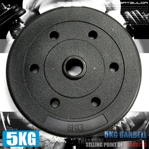 5KG水泥槓片(單片5公斤槓片.啞鈴片.槓鈴片.舉重量訓練.運動健身器材.推薦哪裡買)C113-B2050