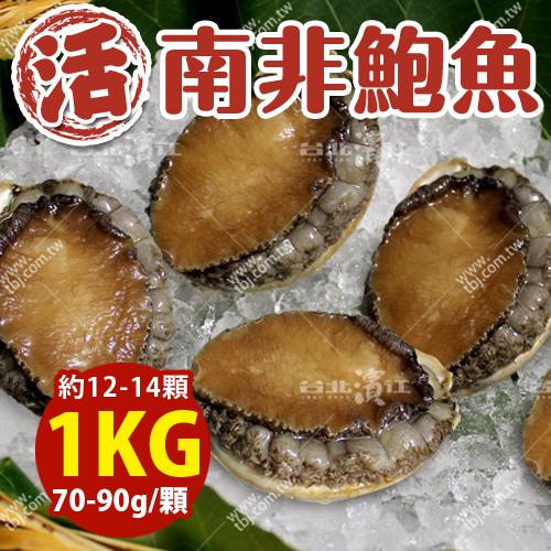 築地空運直送【台北濱江】南非活鮑魚70-90g/顆_1kg裝(約12-14顆)