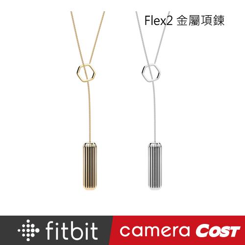Fitbit Flex 2 金屬項鍊 金色 銀色 不鏽鋼