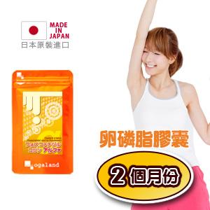 卵磷脂 (大豆)  膠囊 代謝系 【共2個月份】日本進口保健食品 【即期良品】