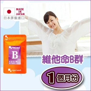 維他命B群膠囊 【約1個月份】日本進口保健食品