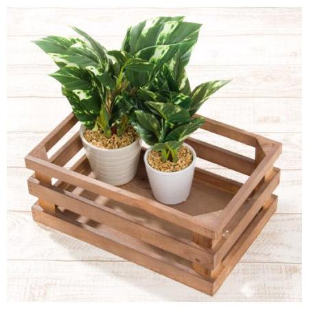 盆栽架 YS1404135A