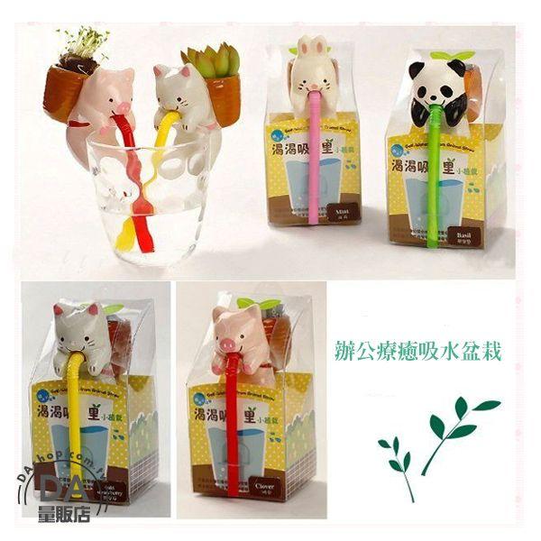 《DA量販店》迷你 盆栽 動物 嘴巴 吸水 喝水 療愈 植物 企鵝(V50-1286)