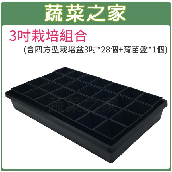 【蔬菜之家005-D110-1】3吋栽培組合(含四方型栽培盆3吋黑色*28個+育苗盤*1個)