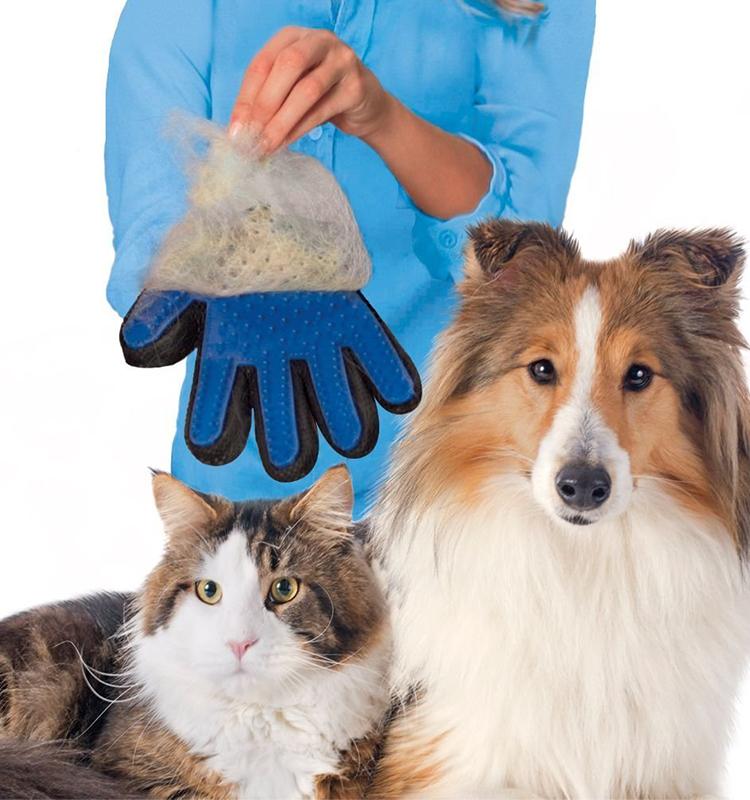 *GuoQu*true touch寵物粘毛手套貓狗清潔按摩手套/粘毛器除毛刷貓狗通用