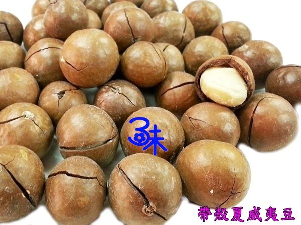 (澳洲) 烘焙 帶殼夏威夷豆  夏威夷 火山豆 (附贈剝殼器)  1包 600 公克 特價 280 元