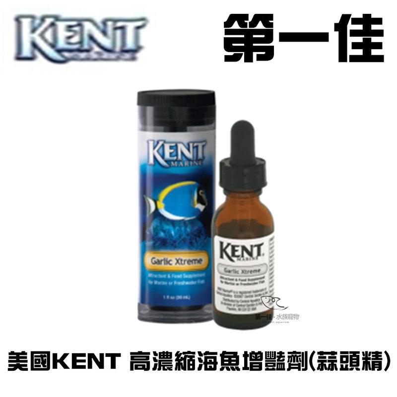[第一佳水族寵物]美國KENT 高濃縮海魚增豔劑(蒜頭精) 4oz