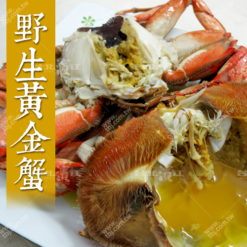 【台北濱江】新鮮熟凍野生黃金蟹0.8-1.0kg/隻