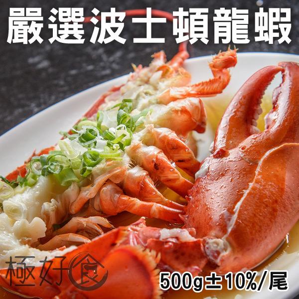 極好食❄波士頓龍蝦-單尾500g±10%