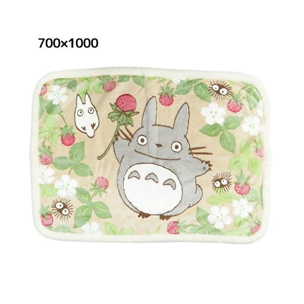 【真愛日本】 15100700008  滾毛邊毛毯70*100-紅莓 龍貓 TOTORO 豆豆龍 毛毯 毯子 被子 居家用品