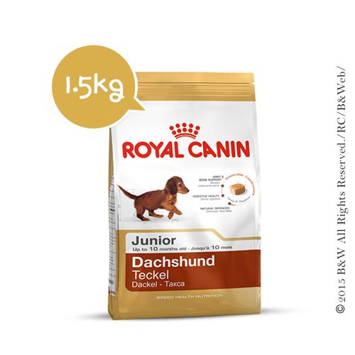 《倍特賣》法國皇家_臘腸幼犬PRDJ30 1.5KG