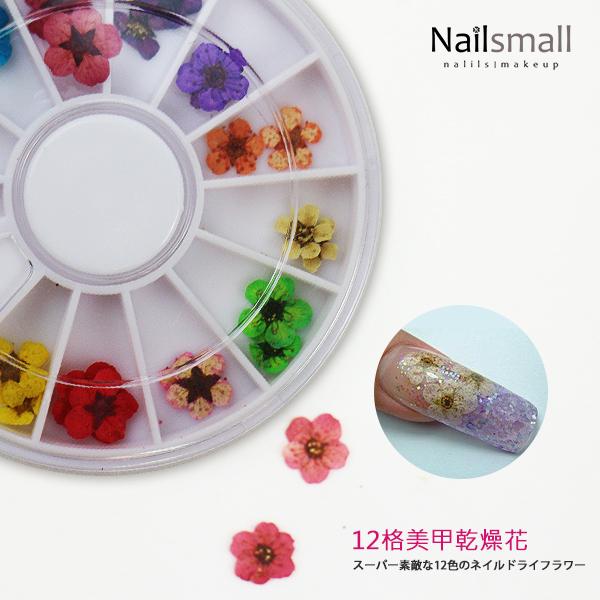 12格乾燥花圓盤組合#23 (顏色隨機出) 裝飾盤
