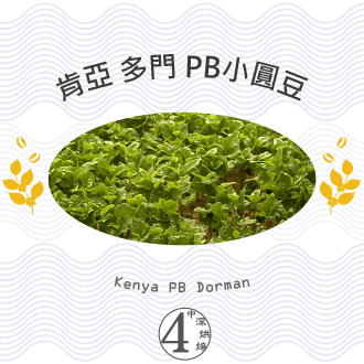 【Metart形而上】肯亞 多門 PB小圓豆