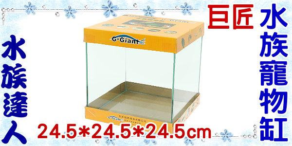 【水族達人】巨匠G.Giant《水族寵物缸˙24.5*24.5*24.5cm》爬蟲箱/平面缸/魚缸/爬蟲缸