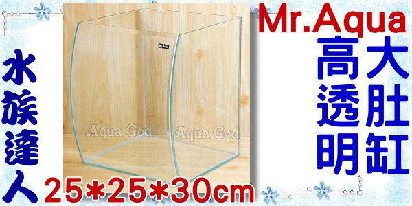 【水族達人】【水族箱魚缸】Mr.Aqua《高透明度大肚缸˙25*25*30cm》超美的唷!