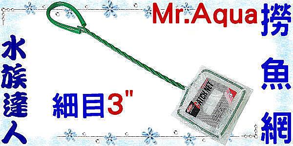 【水族達人】水族先生Mr.Aqua《CATCHNET撈魚網(細目)3吋》 養魚必備品!