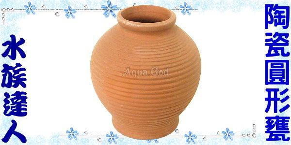 【水族達人】陶瓷《陶瓷圓形甕》產卵器 裝飾、魚兒躲藏、產卵