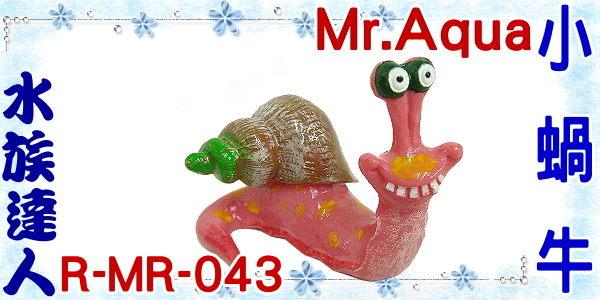 【水族達人】【造景裝飾】水族先生Mr.Aqua《小蝸牛.R-MR-043》魚缸飾品