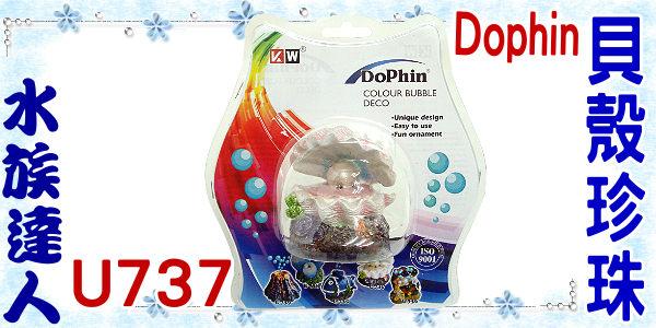 【水族達人】海豚Dophin《貝殼珍珠(附氣泡石).U737》造景裝飾/可吹出泡泡