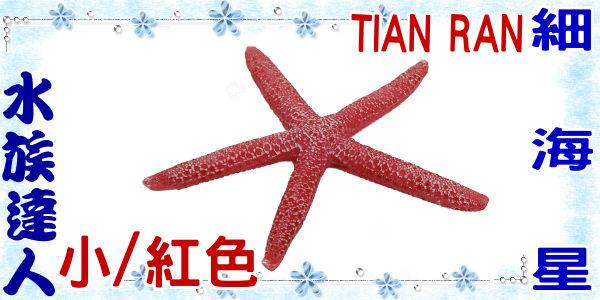【水族達人】【裝飾品】TIAN RAN《細海星 (小/紅色) 1473-XS》海星/造景裝飾
