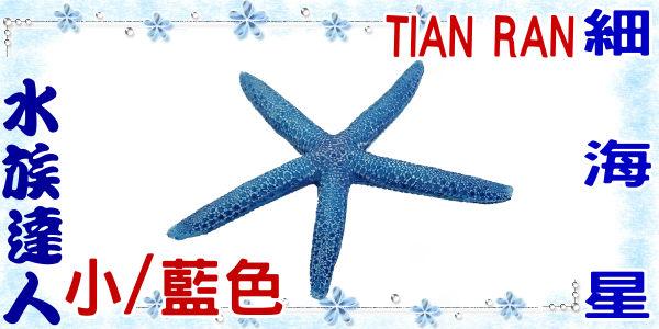 【水族達人】【裝飾品】TIAN RAN《細海星 (小/藍色) 1473-XS》海星/造景裝飾
