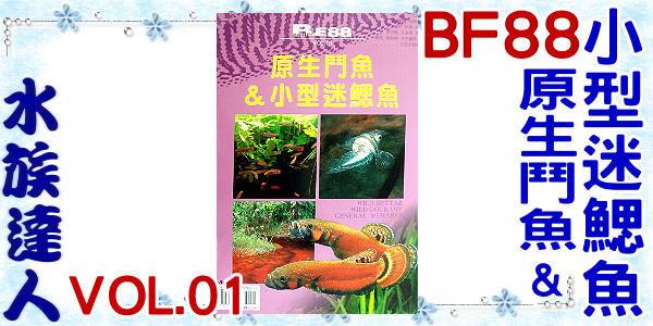 【水族達人】BF88《原生鬥魚&小型迷鰓魚 VOL.01 》鬥魚/迷鰓魚/飼養/繁殖