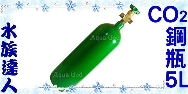 【水族達人】《全新CO2鋼瓶5L(約11Kg)》水草缸必備品!