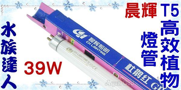 【水族達人】【T5燈管】伊士達ISTA代理《晨輝T5高效植物燈管.39W》超明亮!